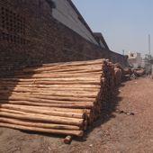 Wooden Ballies manufacturer in New Delhi