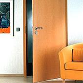 Flush Door Plywood manufacturer in New delhi