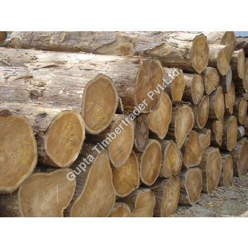 /ProductImg/CP2-Teak-Wood.jpg