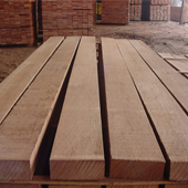 Red Meranti wood Manufacturer in New delhi
